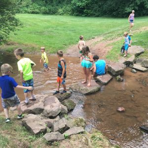 Summer Camp - Creek Exploration