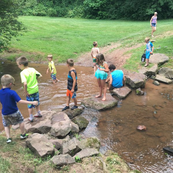 Summer Camp - Creek Exploration