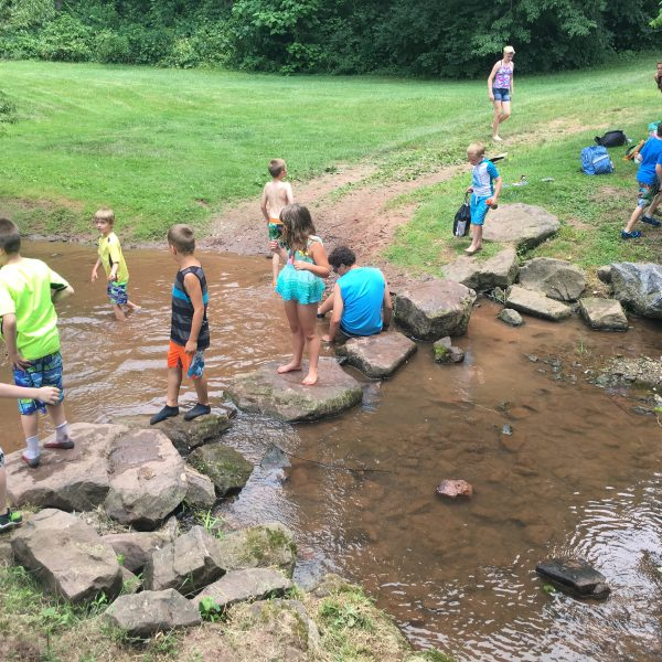 Summer Camp - Creek Fun